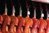 ViolinsNew1