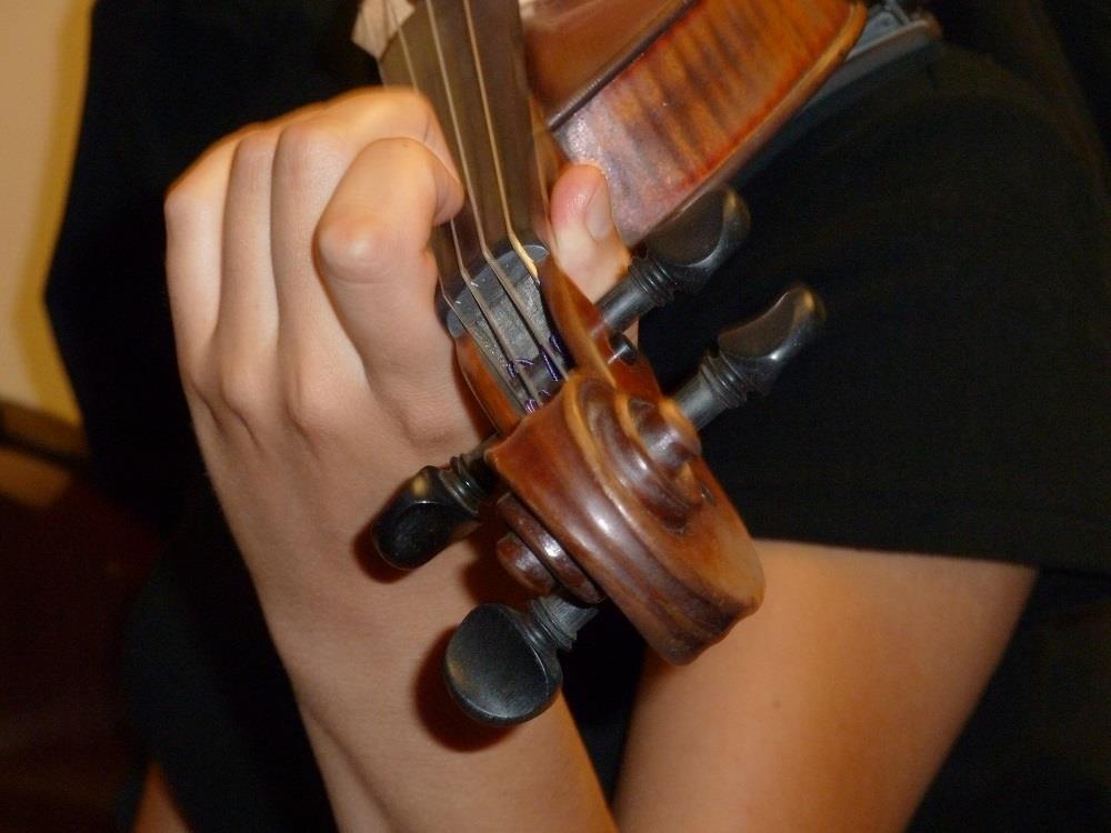 Hand job violin