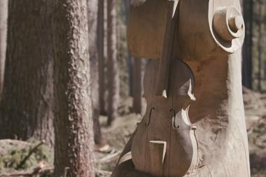 PBS newshour stradivari woods