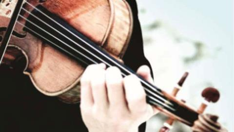 Developing arm, wrist and finger vibrato | Focus | The Strad