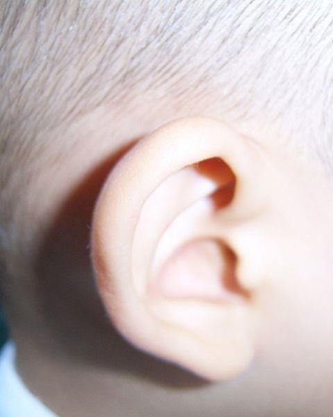 Ear_Web