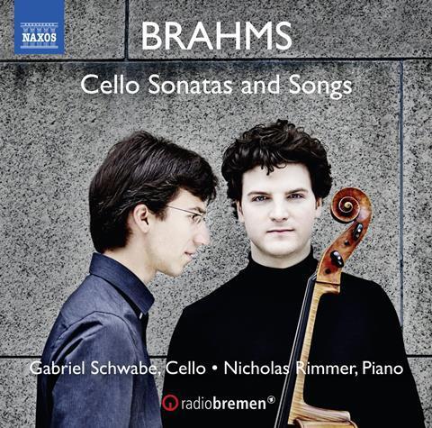 Brahms-Schwalbe