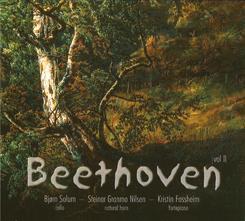 BeethovenSteinar