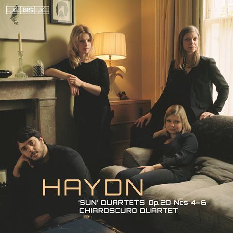 Haydn chiaroscuro