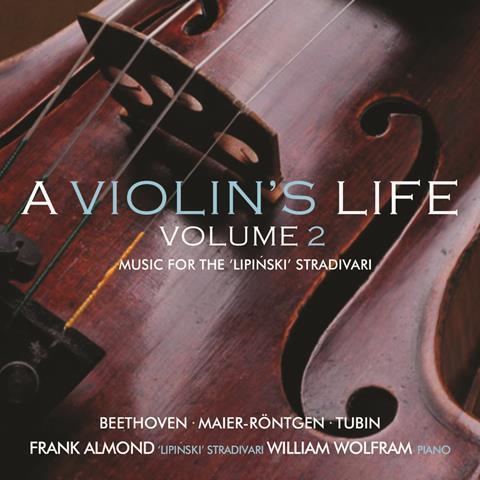 violins-life