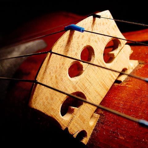 800px-Violin_bridge
