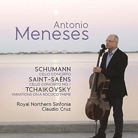 Schumann meneses