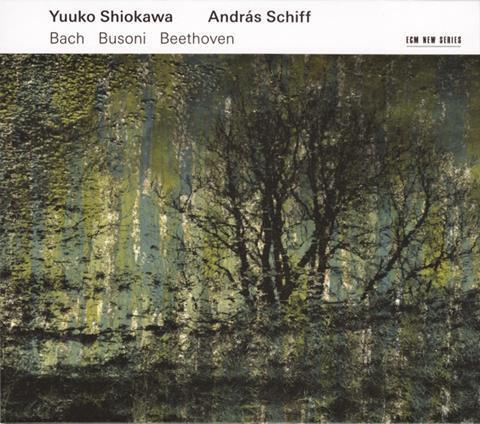 Bach shiokawa.jpeg