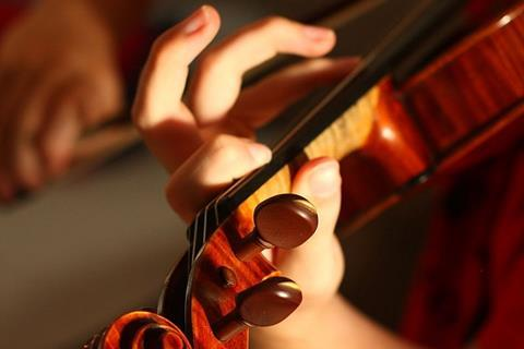 Violin hand cropped