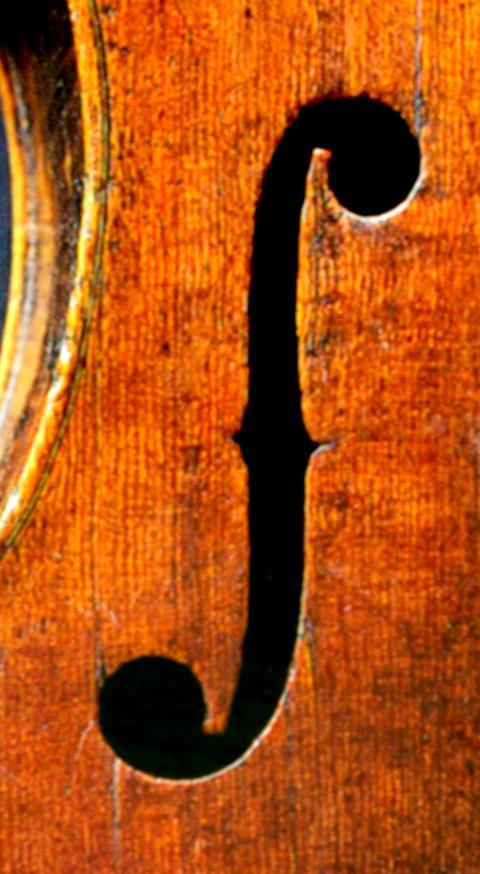 Image result for violin f hole