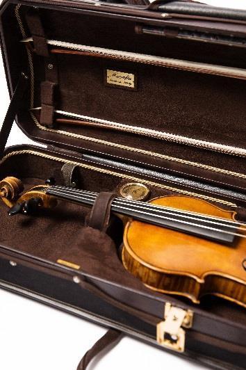 ViolinCaseCloseup